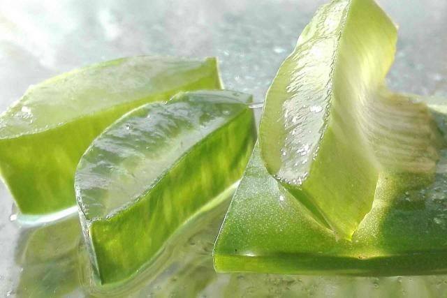 benefits of drinking aloe vera