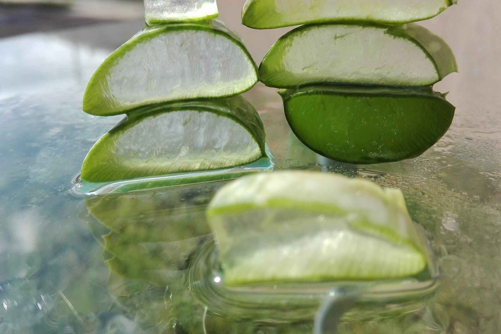 Wonderful Uses for Aloe Vera You Should Know